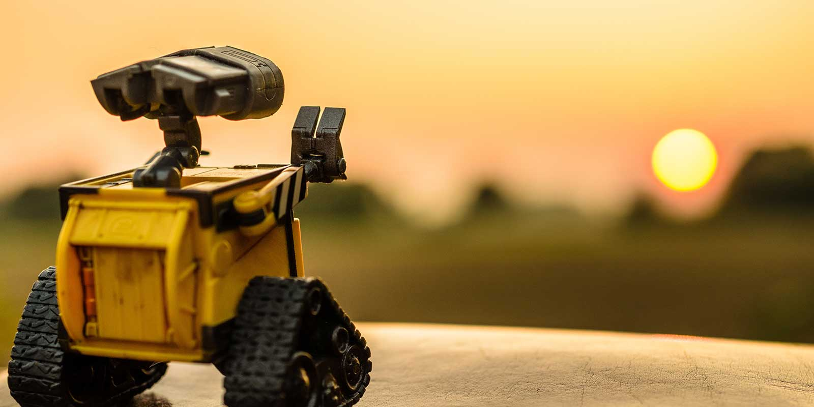 Tiny Robot Enjoying a Sunrise